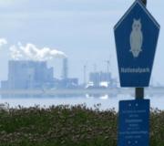 Geen giftig kwik in de Waddenzee